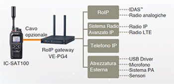 IC-SAT100 interconnessioni